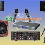 Tìm hiểu về dòng loa AAD cho dàn karaoke gia đình chuyên nghiệp
