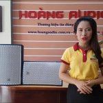 Hướng Dẫn Cách Chọn Loa Karaoke Tốt nhất tại Hoàng Audio