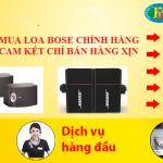 Dòng loa karaoke Bose 301 series V mua ở đâu giá rẻ nhất