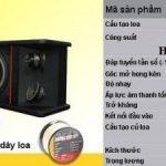 Tổng hợp những dòng loa karaoke gia đình giá rẻ nhất