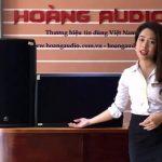 Tổng hợp những dòng loa karaoke hát hay bán chạy nhất hiện nay tại Hoàng Audio