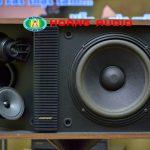 Cách nhận biết loa karaoke Bose 301 Seri II xịn