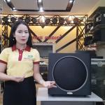 Đánh Giá Loa Sub Karaoke Bose – JBL Với Dòng Siêu Trầm Yamaha…