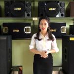 Loa siêu trầm JBL Bass 50 chuẩn Xin Mỹ JBL 418S được sử dụng ra sao?
